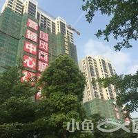 国贸商城同悦20150515踩盘图片