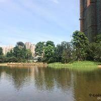 恒大·御景半岛中心园林实景图4.jpg